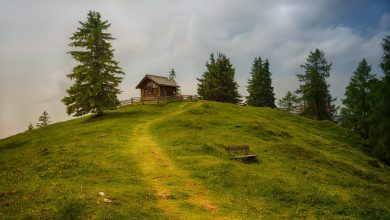 Photo of Боровец е пропит от свежестта на природата